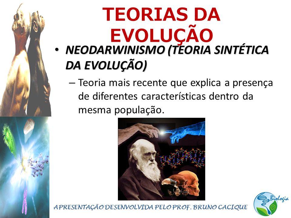 TEORIAS DA EVOLUÇÃO • NEODARWINISMO (TEORIA SINTÉTICA DA EVOLUÇÃO) – Teoria mais recente que explica a presença de diferentes características dentro d