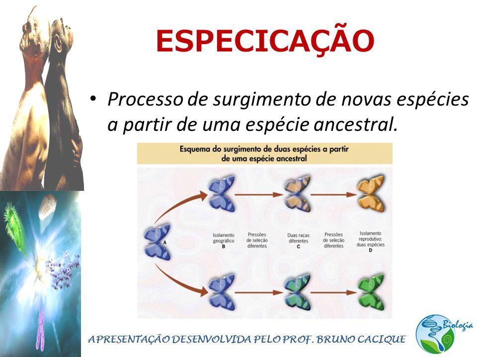 ESPECICAÇÃO • Processo de surgimento de novas espécies a partir de uma espécie ancestral. APRESENTAÇÃO DESENVOLVIDA PELO PROF. BRUNO CACIQUE