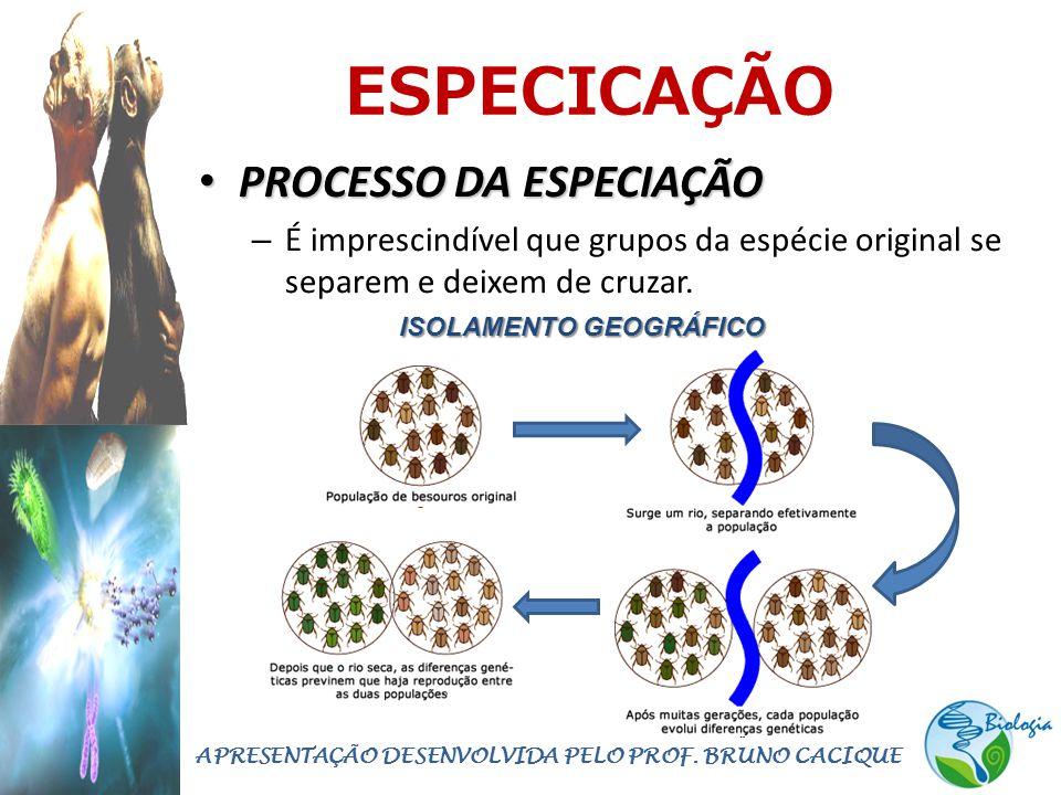 ESPECICAÇÃO • PROCESSO DA ESPECIAÇÃO – É imprescindível que grupos da espécie original se separem e deixem de cruzar. APRESENTAÇÃO DESENVOLVIDA PELO P