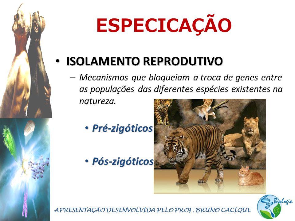 ESPECICAÇÃO • ISOLAMENTO REPRODUTIVO – Mecanismos que bloqueiam a troca de genes entre as populações das diferentes espécies existentes na natureza.