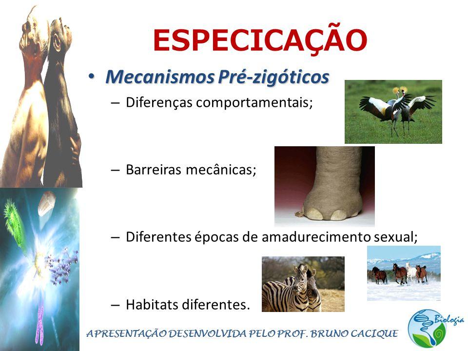 ESPECICAÇÃO • Mecanismos Pré-zigóticos – Diferenças comportamentais; – Barreiras mecânicas; – Diferentes épocas de amadurecimento sexual; – Habitats diferentes.