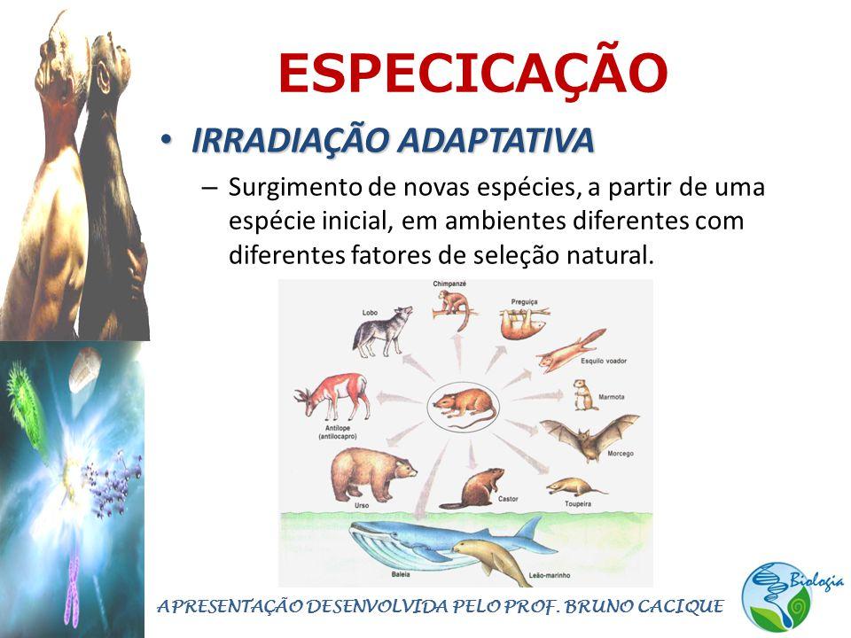 ESPECICAÇÃO • IRRADIAÇÃO ADAPTATIVA – Surgimento de novas espécies, a partir de uma espécie inicial, em ambientes diferentes com diferentes fatores de seleção natural.
