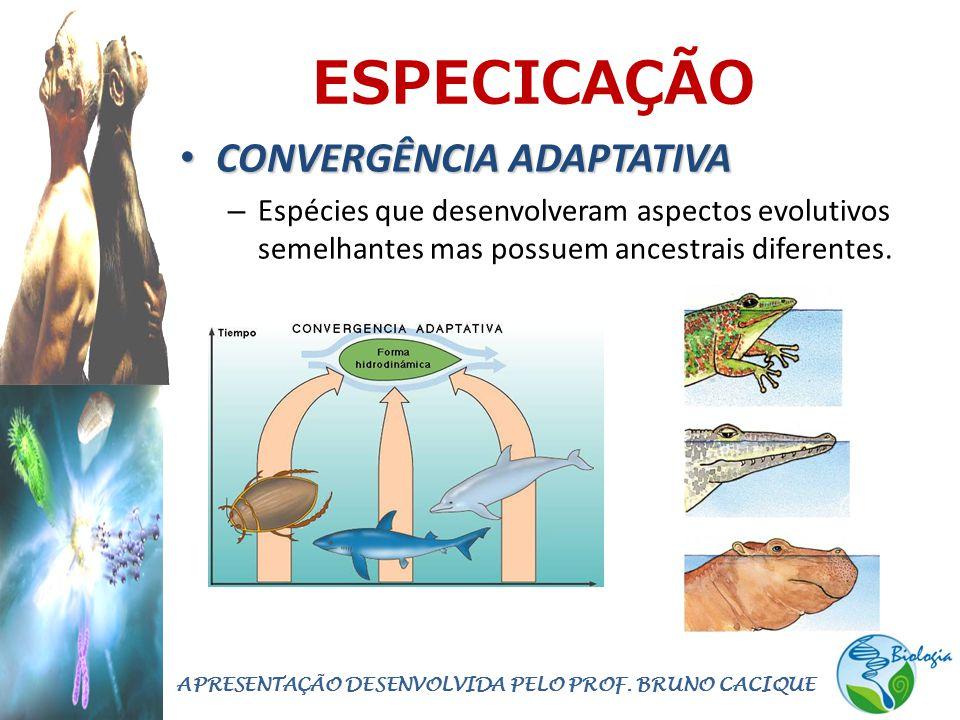 ESPECICAÇÃO • CONVERGÊNCIA ADAPTATIVA – Espécies que desenvolveram aspectos evolutivos semelhantes mas possuem ancestrais diferentes.