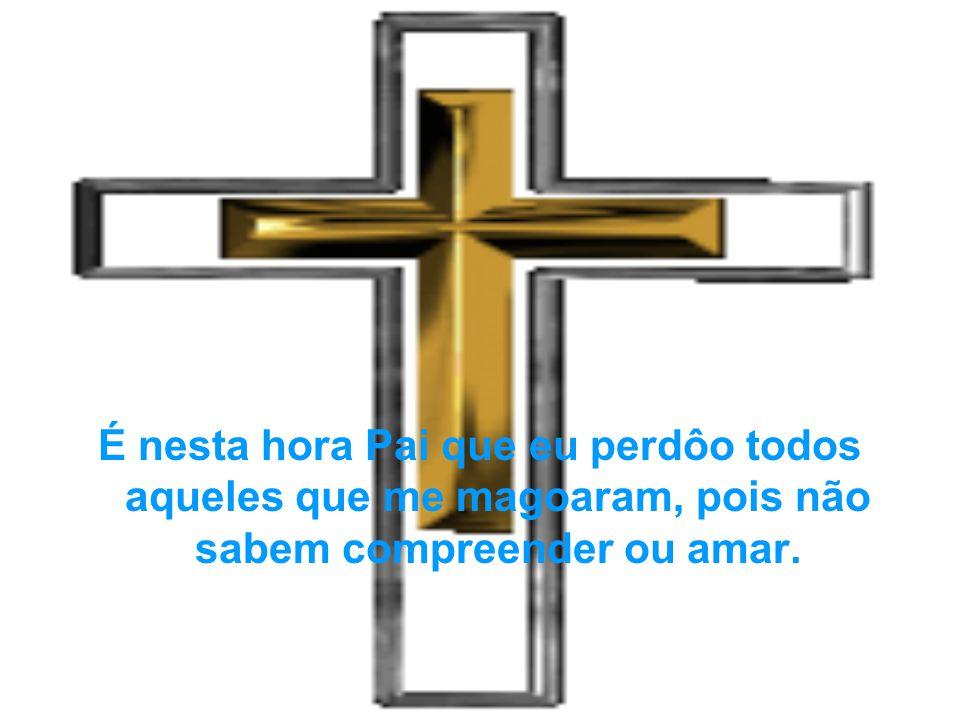 É nesta hora Pai que eu perdôo todos aqueles que me magoaram, pois não sabem compreender ou amar.