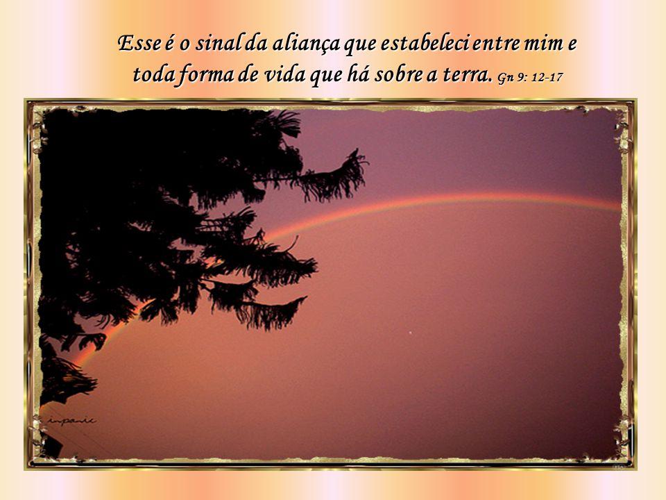 Toda vez que o arco-íris estiver nas nuvens, olharei para ele e me lembrarei da aliança eterna entre Deus e todos os seres vivos de todas as espécies