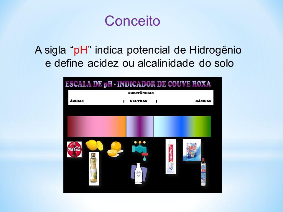 """A sigla """"pH"""" indica potencial de Hidrogênio e define acidez ou alcalinidade do solo Conceito"""