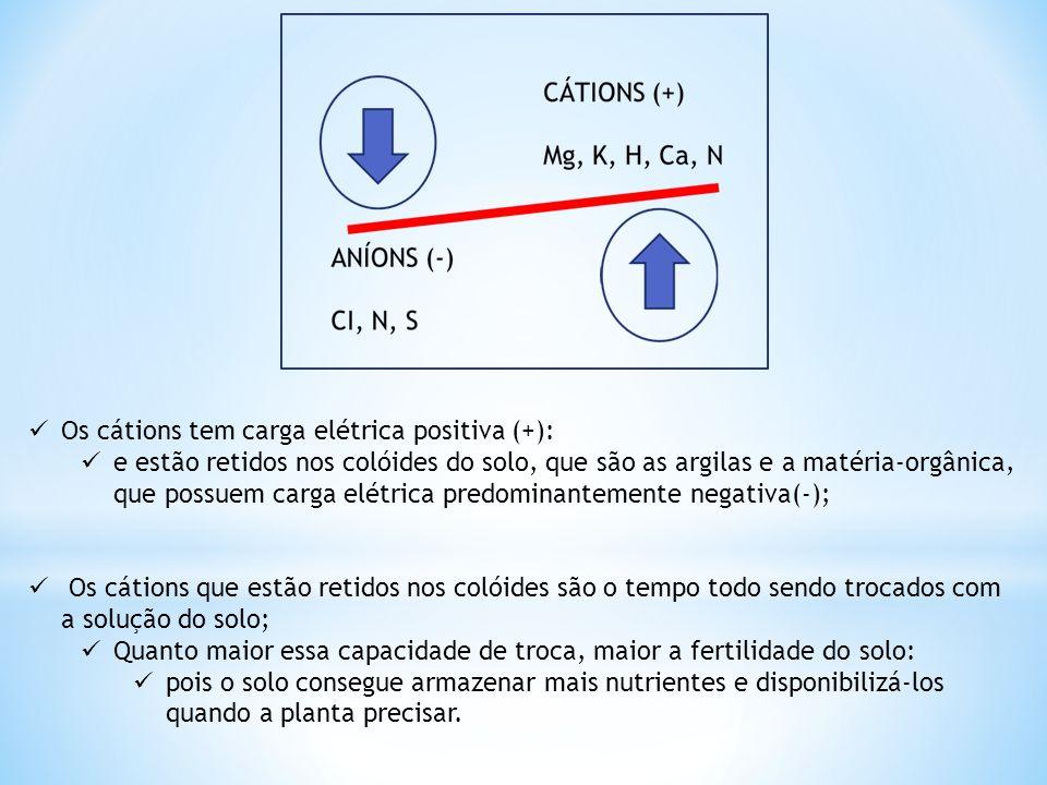  Os cátions tem carga elétrica positiva (+):  e estão retidos nos colóides do solo, que são as argilas e a matéria-orgânica, que possuem carga elétr
