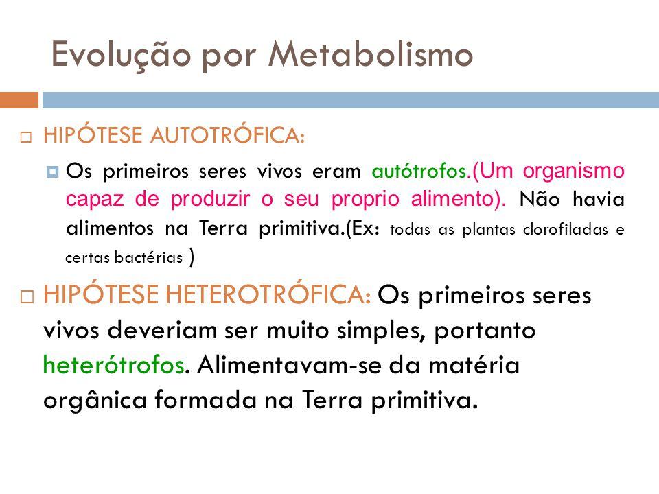 Evolução por Metabolismo  HIPÓTESE AUTOTRÓFICA:  Os primeiros seres vivos eram autótrofos.(Um organismo capaz de produzir o seu proprio alimento). N