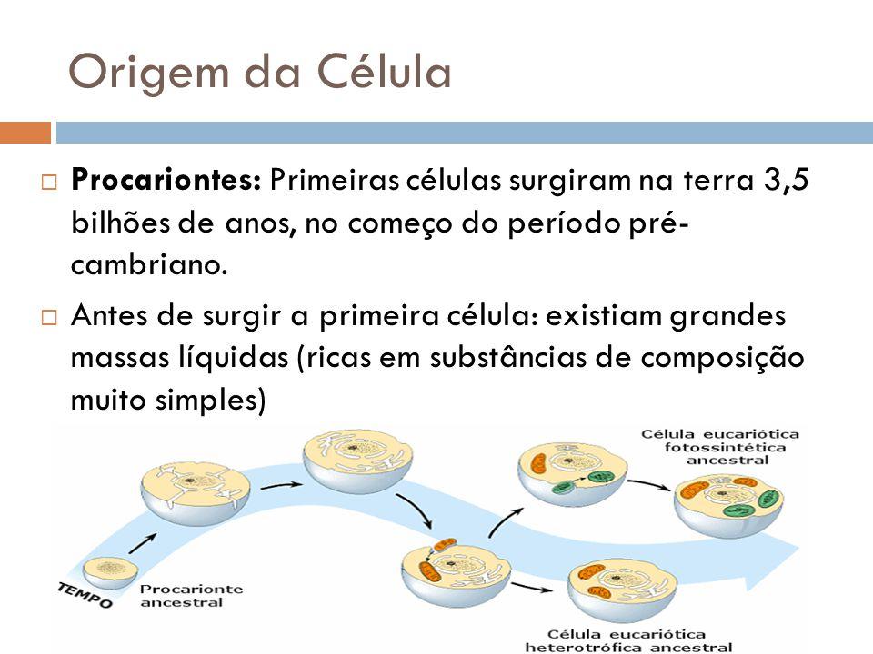 Origem da Célula  Procariontes: Primeiras células surgiram na terra 3,5 bilhões de anos, no começo do período pré- cambriano.  Antes de surgir a pri