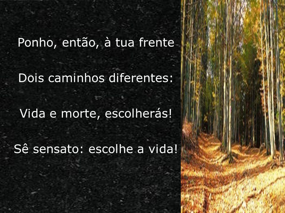 Ponho, então, à tua frente Dois caminhos diferentes: Vida e morte, escolherás! Sê sensato: escolhe a vida!