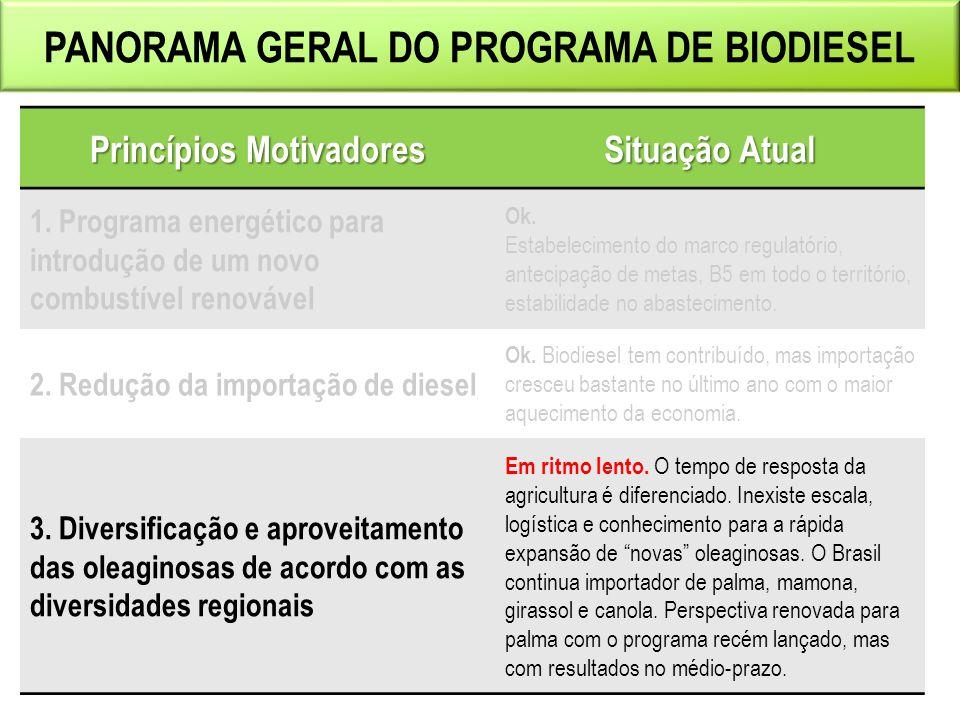 PANORAMA GERAL DO PROGRAMA DE BIODIESEL Princípios Motivadores Situação Atual 1.