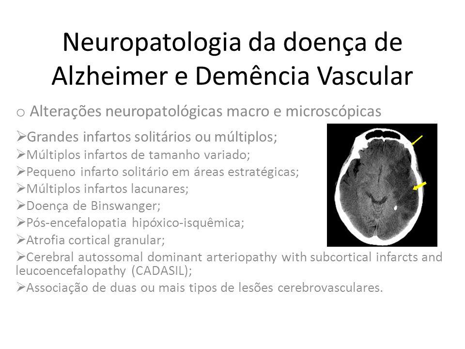 Neuropatologia da doença de Alzheimer e Demência Vascular o Alterações neuropatológicas macro e microscópicas  Grandes infartos solitários ou múltipl