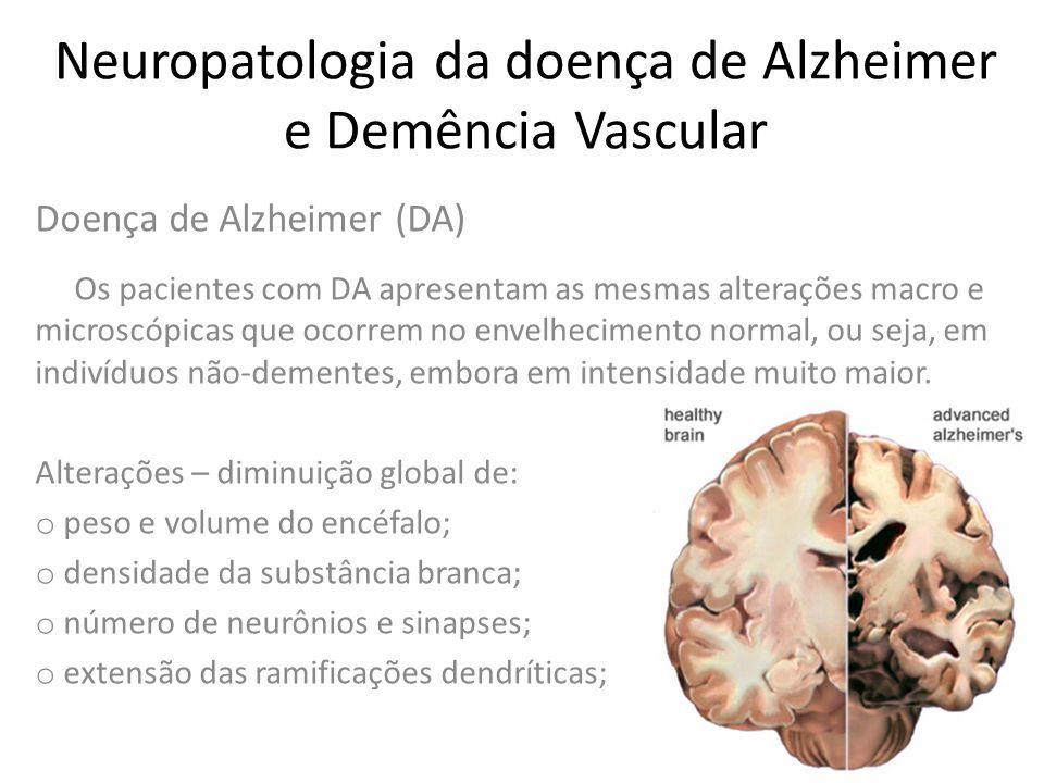 Neuropatologia da doença de Alzheimer e Demência Vascular Doença de Alzheimer (DA) Modificações microscópicas: o placas senis; o emaranhados neurofibrilares de Alzheimer; o degeneração grânulo-vacuolar; o corpos de Hirano; o angiopatia amilóide cerebral; diminuição do número de neurônios (24-70%) e sinapses.