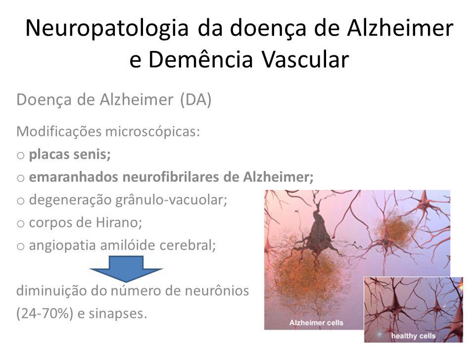 Neuropatologia da doença de Alzheimer e Demência Vascular o Durante certo tempo a perda sináptica é compensada pelo aumento das sinapses remanescentes, sugerindo plasticidade neuronal (período prodrômico); Perda de memória associada à idade/transtorno cognitivo leve o Entretanto, nas fases mais avançadas da doença esse mecanismo compensatório não é mais observado;