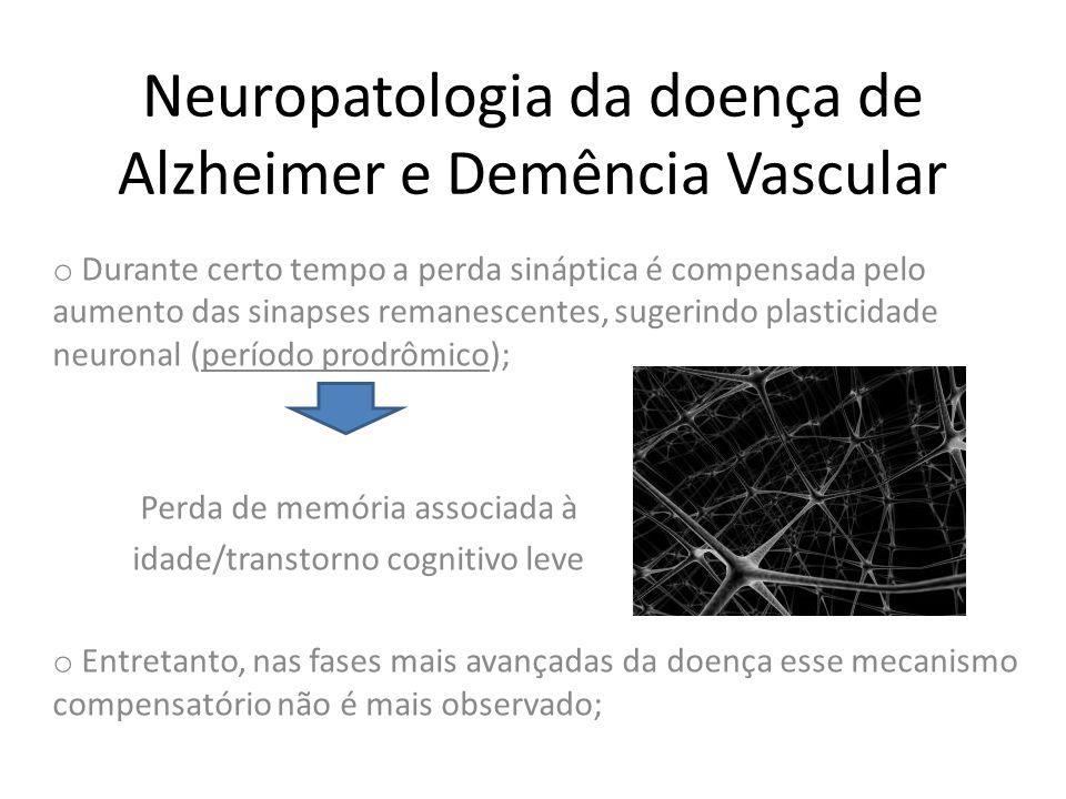 Neuropatologia da doença de Alzheimer e Demência Vascular o Durante certo tempo a perda sináptica é compensada pelo aumento das sinapses remanescentes