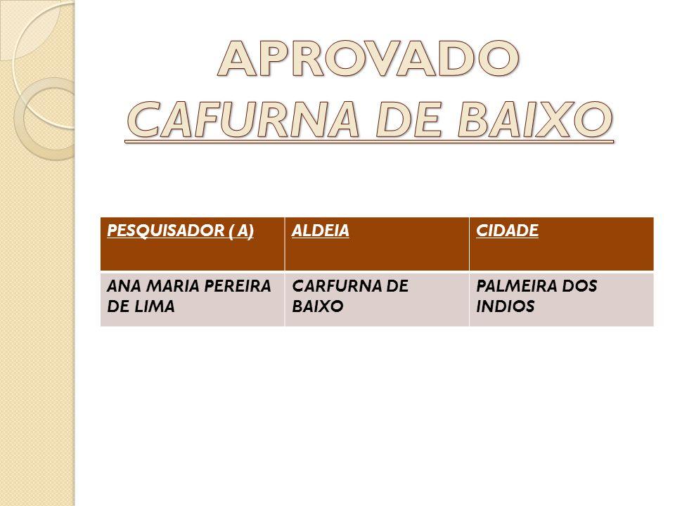 PESQUISADOR ( A)ALDEIACIDADE ANA MARIA PEREIRA DE LIMA CARFURNA DE BAIXO PALMEIRA DOS INDIOS