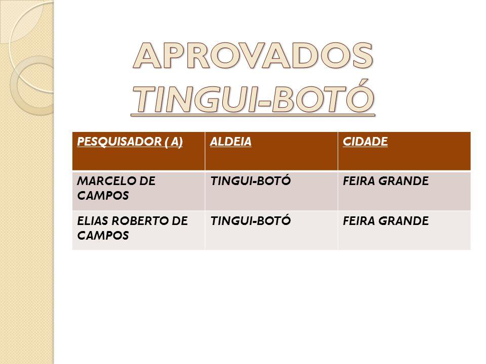 PESQUISADOR ( A)ALDEIACIDADE MARCELO DE CAMPOS TINGUI-BOTÓFEIRA GRANDE ELIAS ROBERTO DE CAMPOS TINGUI-BOTÓFEIRA GRANDE
