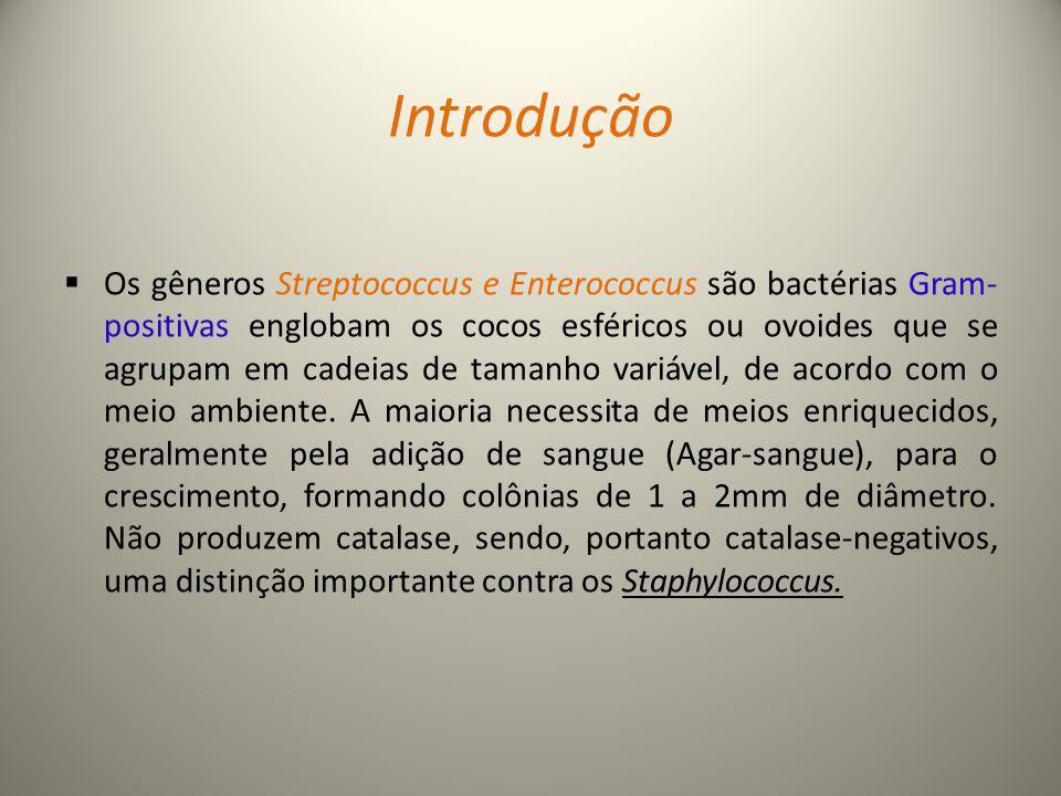 Introdução  Os gêneros Streptococcus e Enterococcus são bactérias Gram- positivas englobam os cocos esféricos ou ovoides que se agrupam em cadeias de