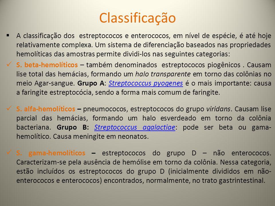 Classificação  A classificação dos estreptococos e enterococos, em nível de espécie, é até hoje relativamente complexa. Um sistema de diferenciação b