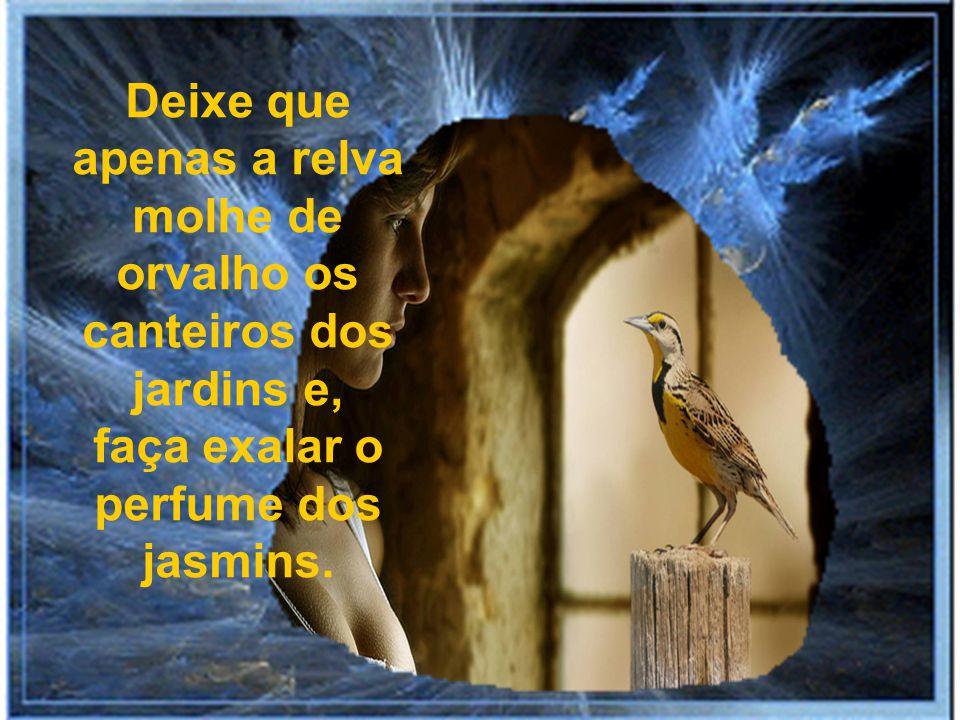 Não erga seu olhar aos ninhos dos passarinhos nem ao desabrochar de uma flor. Não permita que seus olhos ensaiem quaisquer lágrimas...