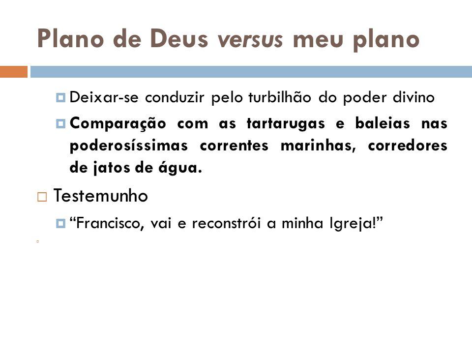 Plano de Deus versus meu plano  Deixar-se conduzir pelo turbilhão do poder divino  Comparação com as tartarugas e baleias nas poderosíssimas corrent