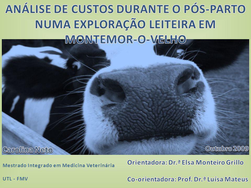 3.RESULTADOS E DISCUSSÃO CUSTOS ASSOCIADOS COM A FERTILIDADE: I.CUSTO DE UM DIA EXTRA II.