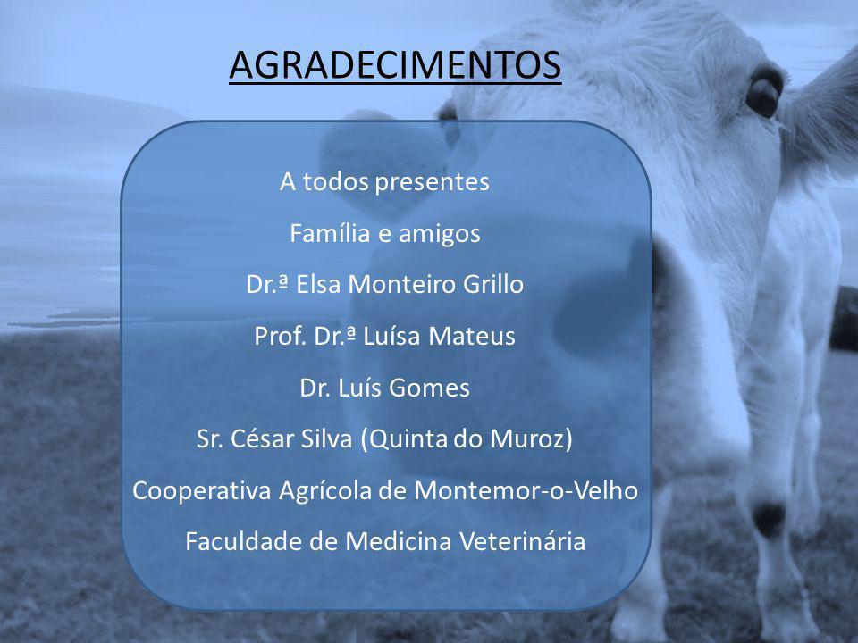 AGRADECIMENTOS A todos presentes Família e amigos Dr.ª Elsa Monteiro Grillo Prof. Dr.ª Luísa Mateus Dr. Luís Gomes Sr. César Silva (Quinta do Muroz) C
