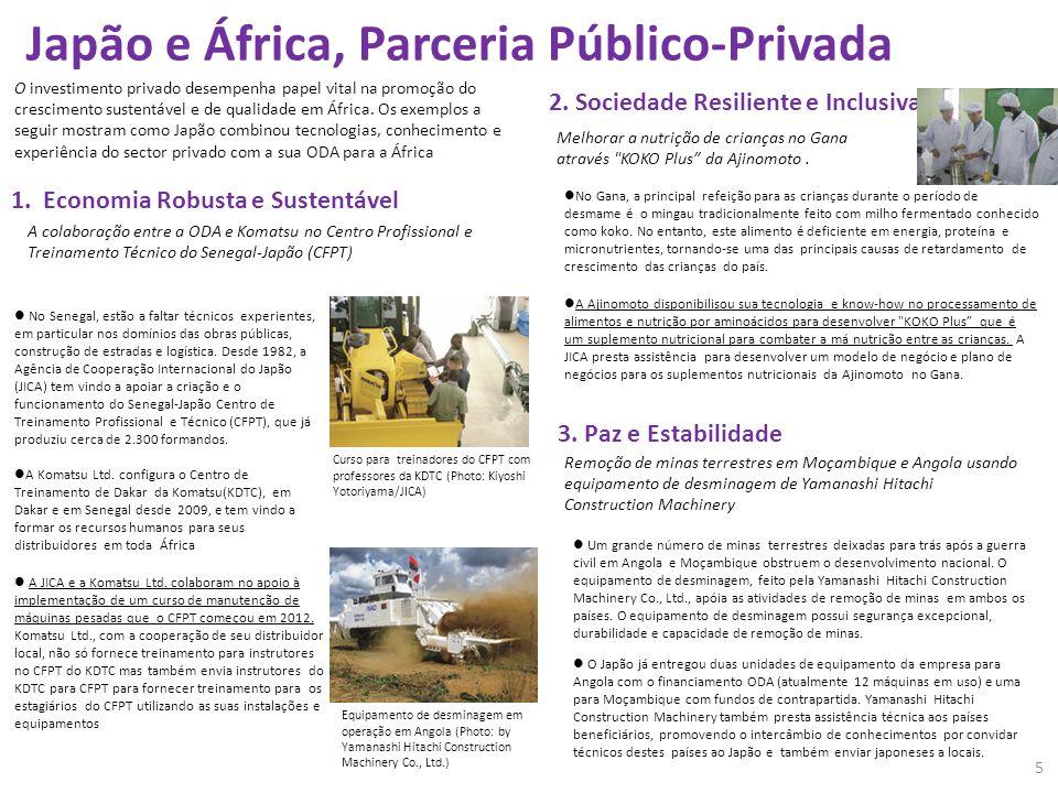 Japão e África, Parceria Público-Privada O investimento privado desempenha papel vital na promoção do crescimento sustentável e de qualidade em África