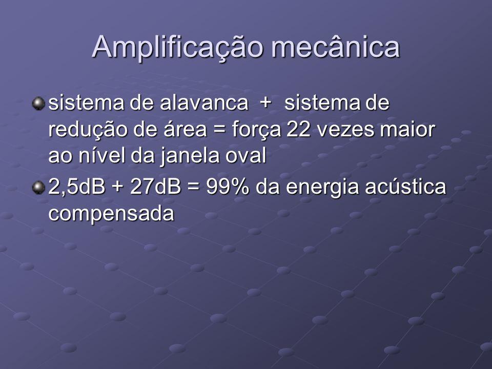 Amplificação mecânica sistema de alavanca + sistema de redução de área = força 22 vezes maior ao nível da janela oval 2,5dB + 27dB = 99% da energia ac