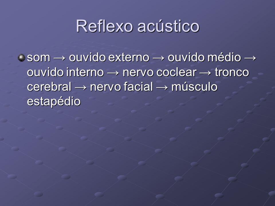 Reflexo acústico som → ouvido externo → ouvido médio → ouvido interno → nervo coclear → tronco cerebral → nervo facial → músculo estapédio