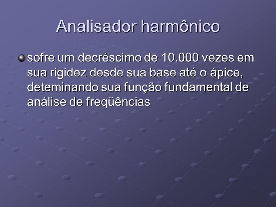 Analisador harmônico sofre um decréscimo de 10.000 vezes em sua rigidez desde sua base até o ápice, deteminando sua função fundamental de análise de f