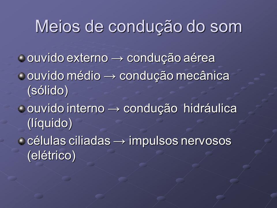 Meios de condução do som ouvido externo → condução aérea ouvido médio → condução mecânica (sólido) ouvido interno → condução hidráulica (líquido) célu