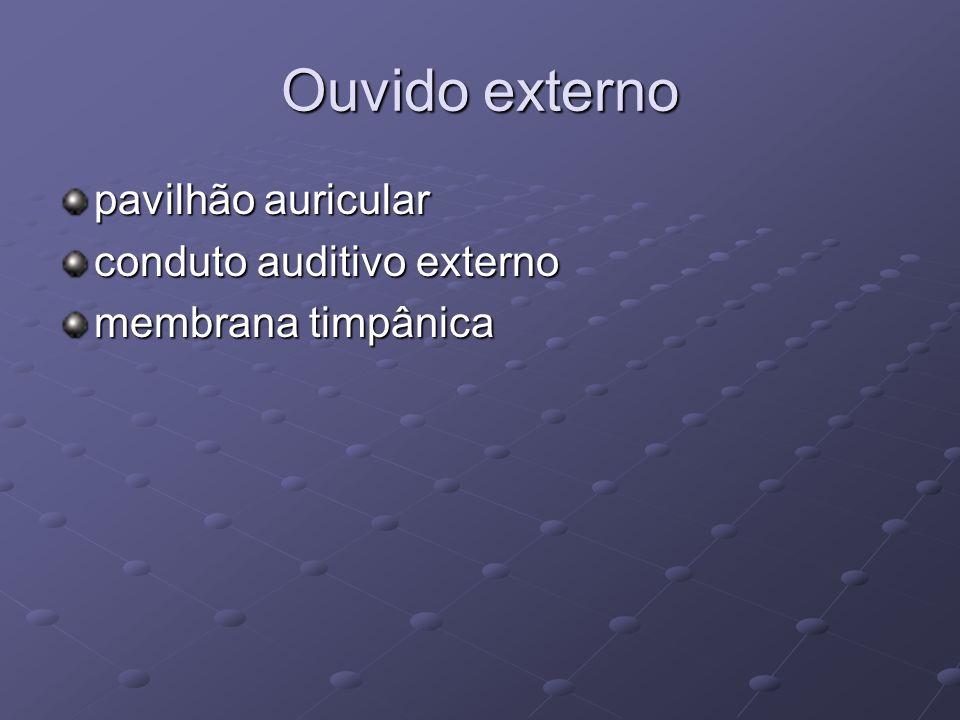 Ouvido externo pavilhão auricular conduto auditivo externo membrana timpânica