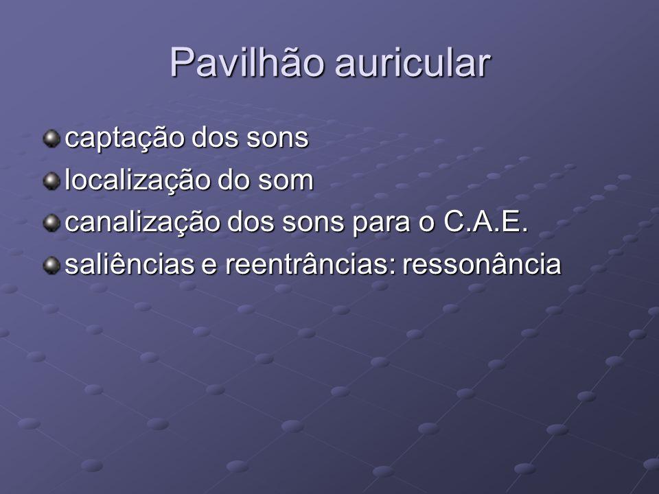 Pavilhão auricular captação dos sons localização do som canalização dos sons para o C.A.E. saliências e reentrâncias: ressonância