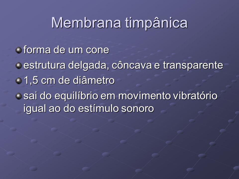 Membrana timpânica forma de um cone estrutura delgada, côncava e transparente 1,5 cm de diâmetro sai do equilíbrio em movimento vibratório igual ao do