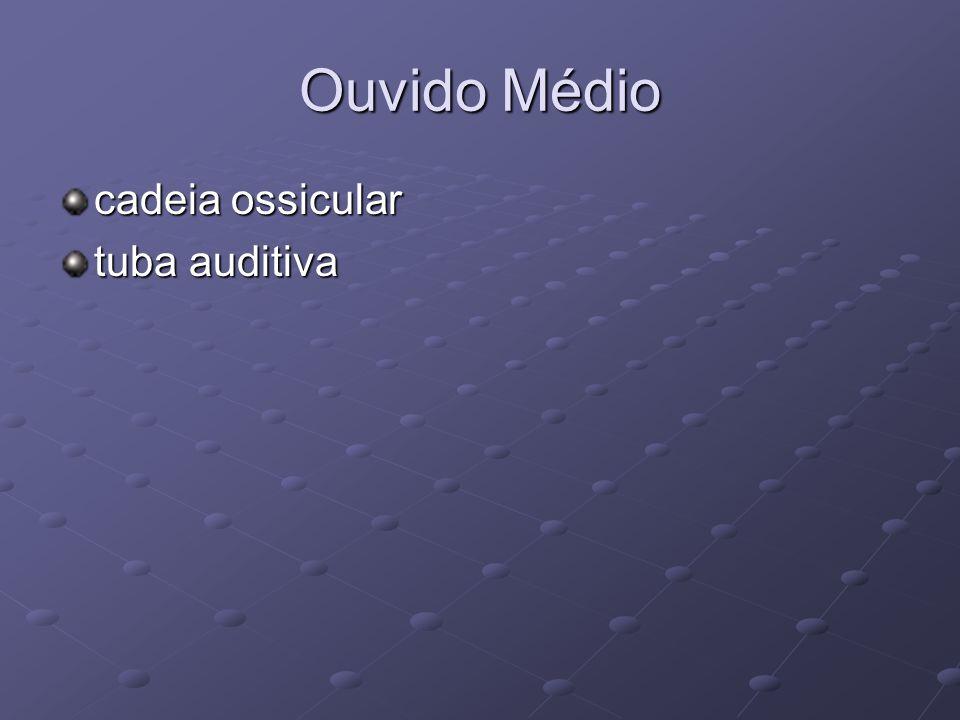 Ouvido Médio cadeia ossicular tuba auditiva