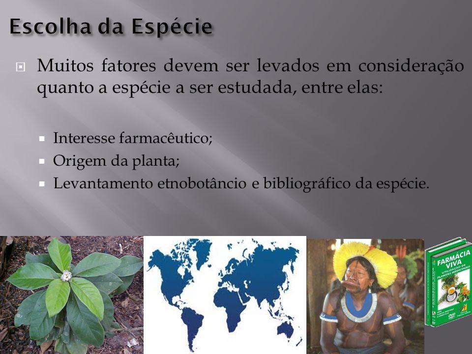  Muitos fatores devem ser levados em consideração quanto a espécie a ser estudada, entre elas:  Interesse farmacêutico;  Origem da planta;  Levantamento etnobotâncio e bibliográfico da espécie.