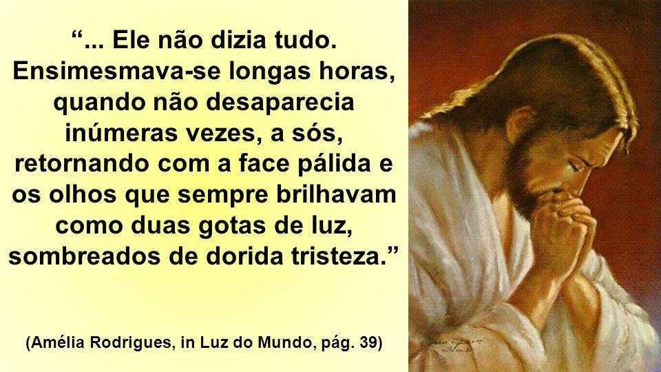 (Amélia Rodrigues, in Luz do Mundo, página 96)