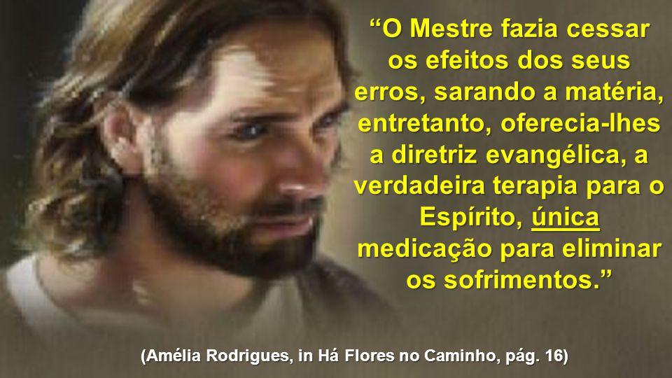 """""""O Mestre fazia cessar os efeitos dos seus erros, sarando a matéria, entretanto, oferecia-lhes a diretriz evangélica, a verdadeira terapia para o Espí"""