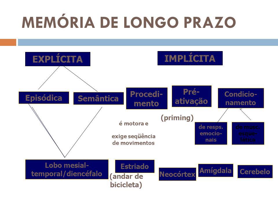 MEMÓRIA DE LONGO PRAZO IMPLÍCITA EXPLÍCITA Episódica Semântica Lobo mesial- temporal/diencéfalo Procedi- mento Pré- ativação Condicio- namento de resp