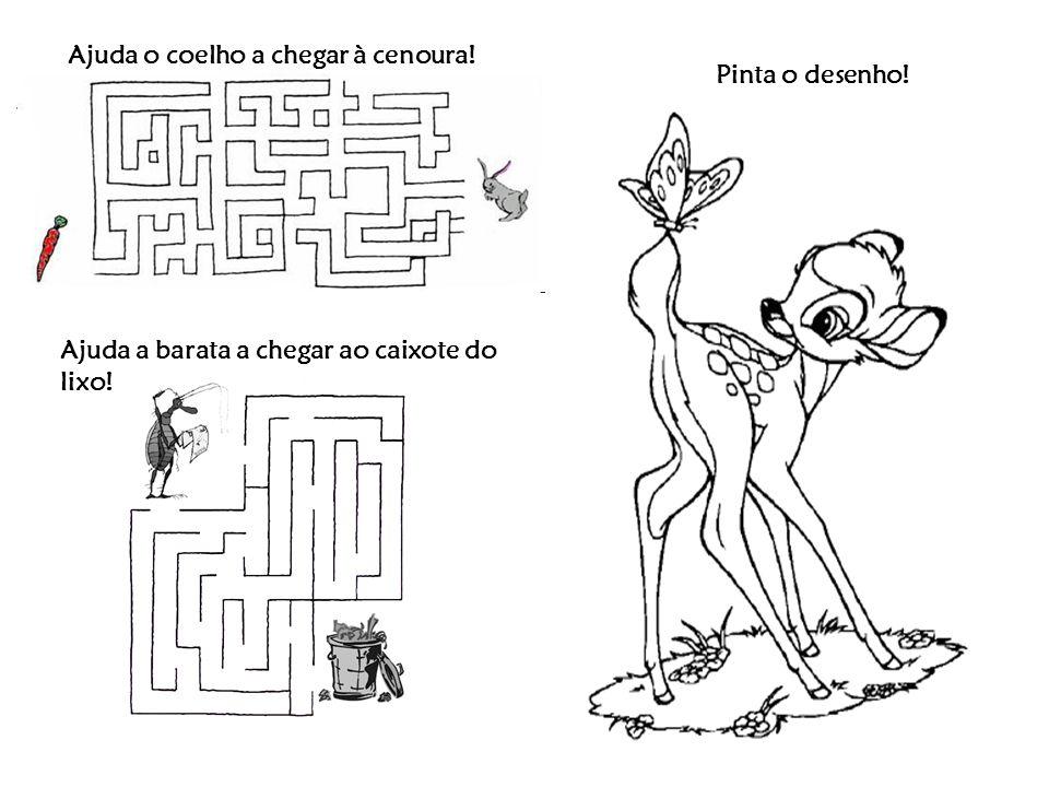 Ajuda o coelho a chegar à cenoura! Ajuda a barata a chegar ao caixote do lixo! Pinta o desenho!