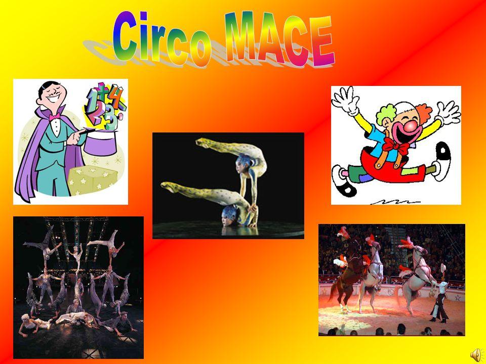 •O nosso trabalho é sobre o circo.