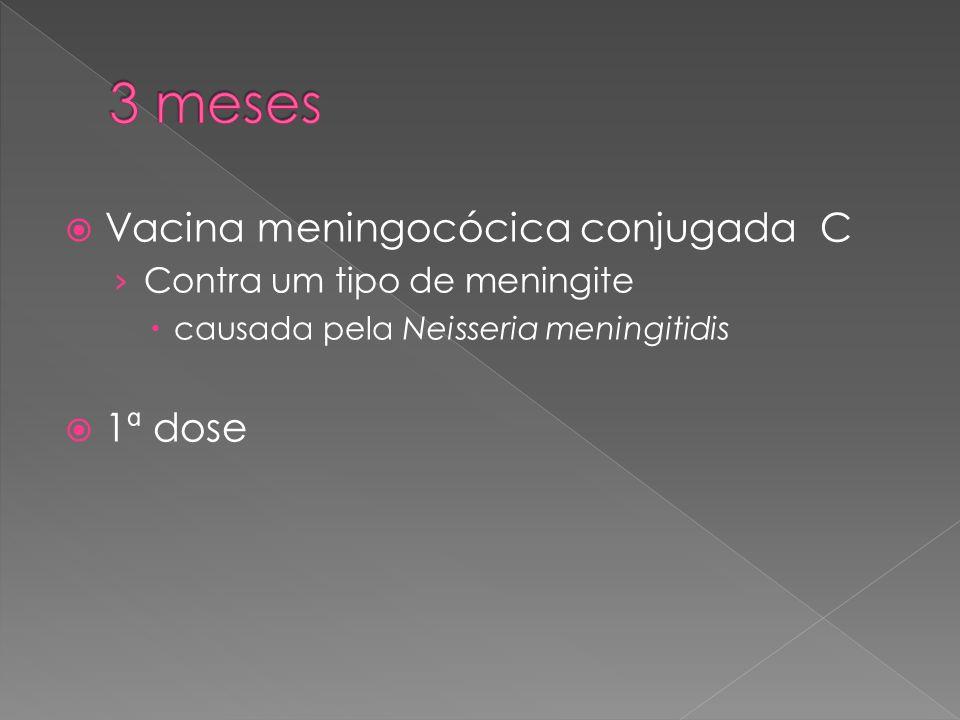  Vacina meningocócica conjugada C › Contra um tipo de meningite  causada pela Neisseria meningitidis  1ª dose