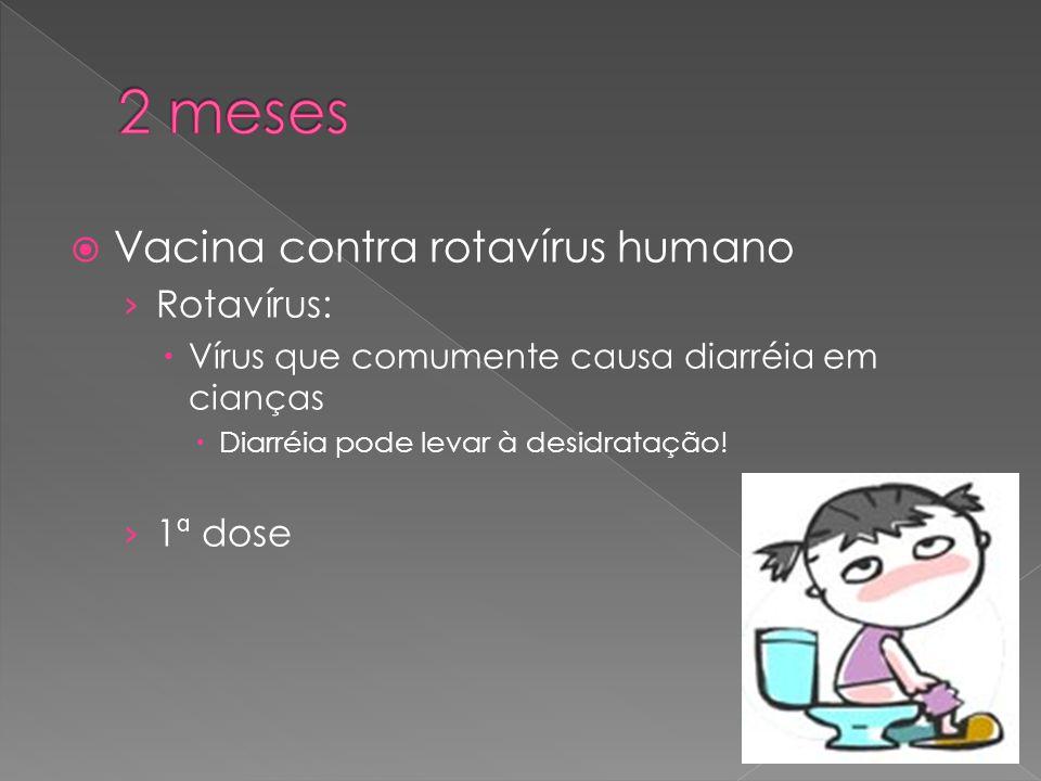  Vacina contra rotavírus humano › Rotavírus:  Vírus que comumente causa diarréia em cianças  Diarréia pode levar à desidratação! › 1ª dose
