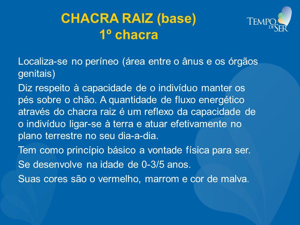 CHACRA RAIZ (base) 1º chacra Localiza-se no períneo (área entre o ânus e os órgãos genitais) Diz respeito à capacidade de o indivíduo manter os pés so