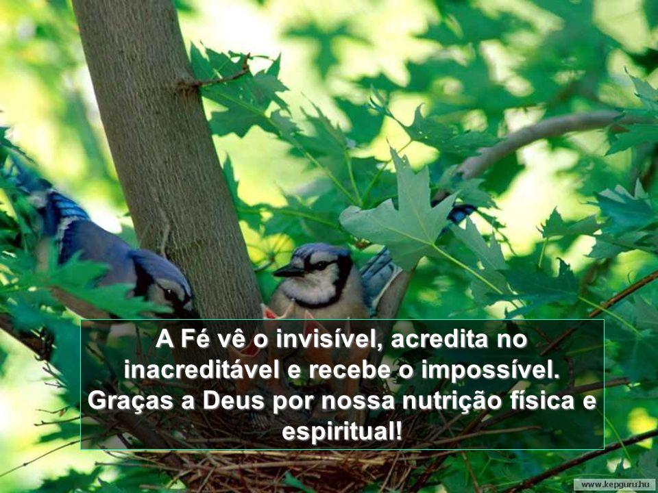 A Fé vê o invisível, acredita no inacreditável e recebe o impossível.