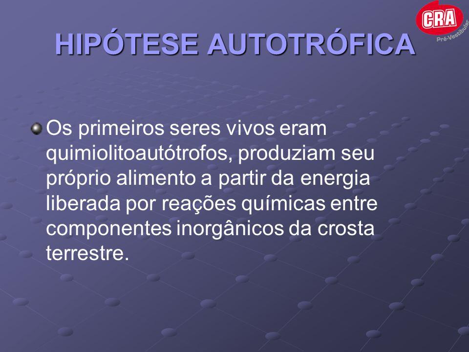 HIPÓTESE AUTOTRÓFICA Os primeiros seres vivos eram quimiolitoautótrofos, produziam seu próprio alimento a partir da energia liberada por reações quími