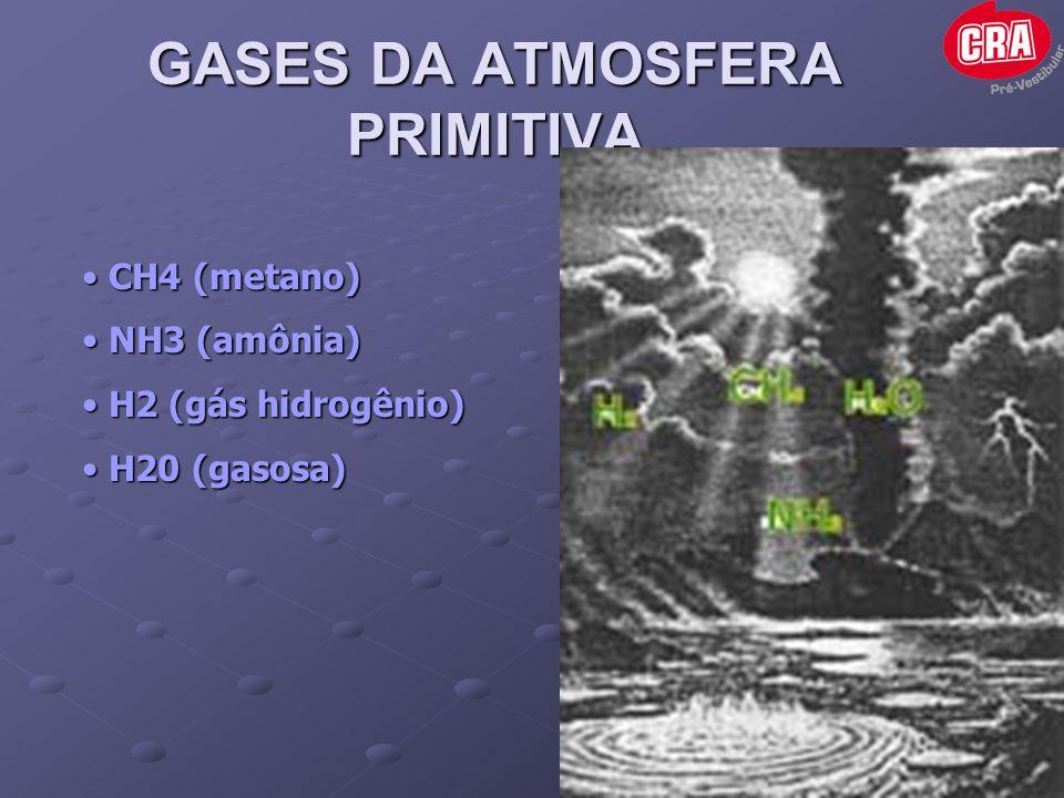 GASES DA ATMOSFERA PRIMITIVA • CH4 (metano) • NH3 (amônia) • H2 (gás hidrogênio) • H20 (gasosa)