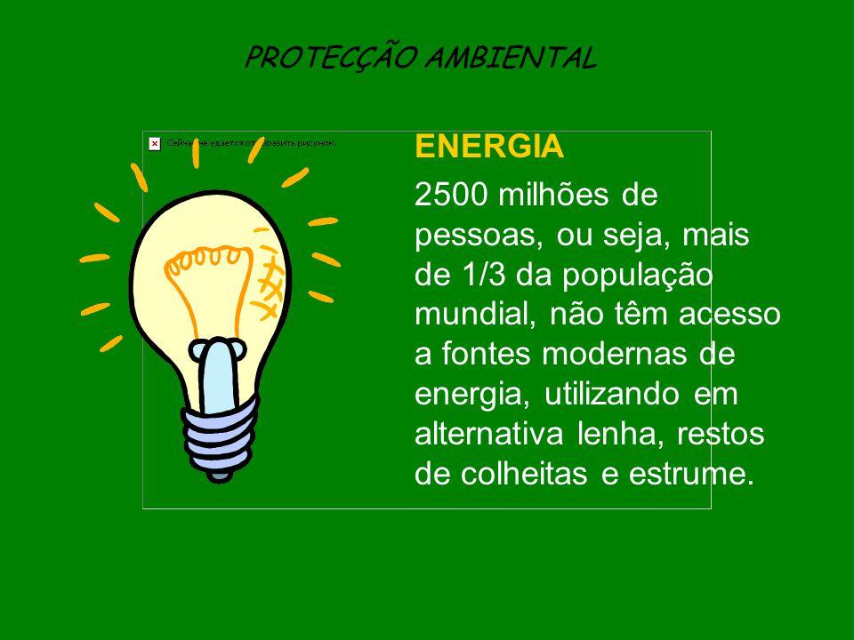 PROTECÇÃO AMBIENTAL ENERGIA 2500 milhões de pessoas, ou seja, mais de 1/3 da população mundial, não têm acesso a fontes modernas de energia, utilizand