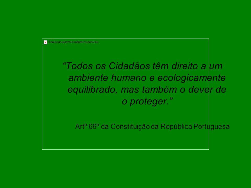 """""""Todos os Cidadãos têm direito a um ambiente humano e ecologicamente equilibrado, mas também o dever de o proteger."""" Artº 66º da Constituição da Repúb"""